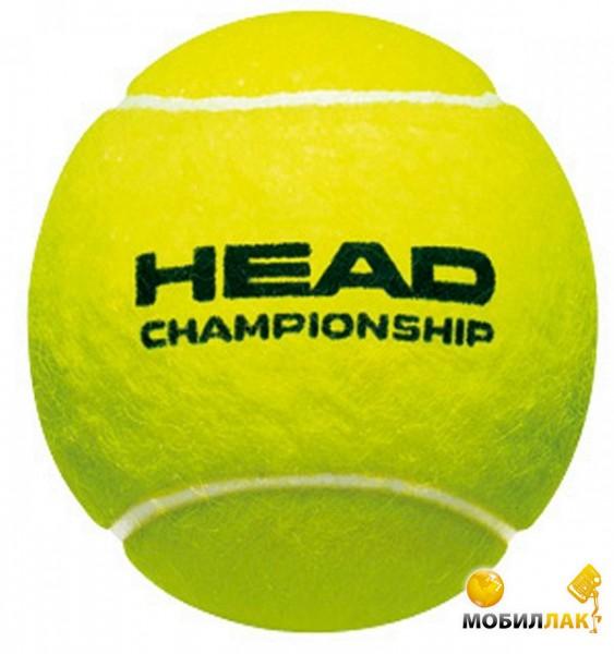head Head Championship 3B
