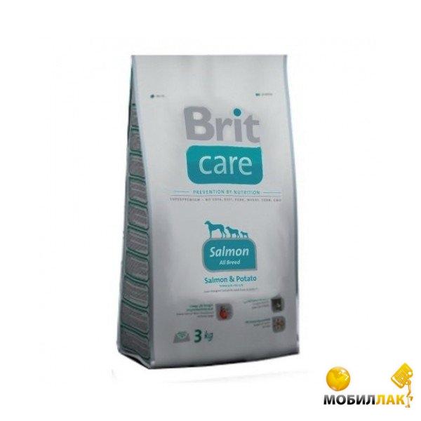 Гипоаллергенный корм для кошек: отзывы ветеринаров :: SYL
