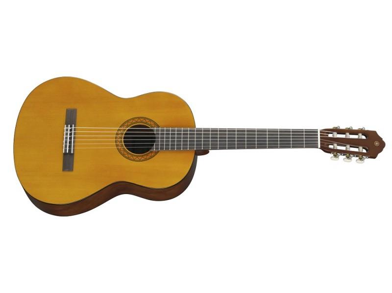 Ну а в руках гитариста-виртуоза, она способна издавать прекрасные звуки