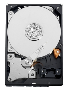 Western Digital AV-GP 500GB (WD5000AVCS) Western Digital