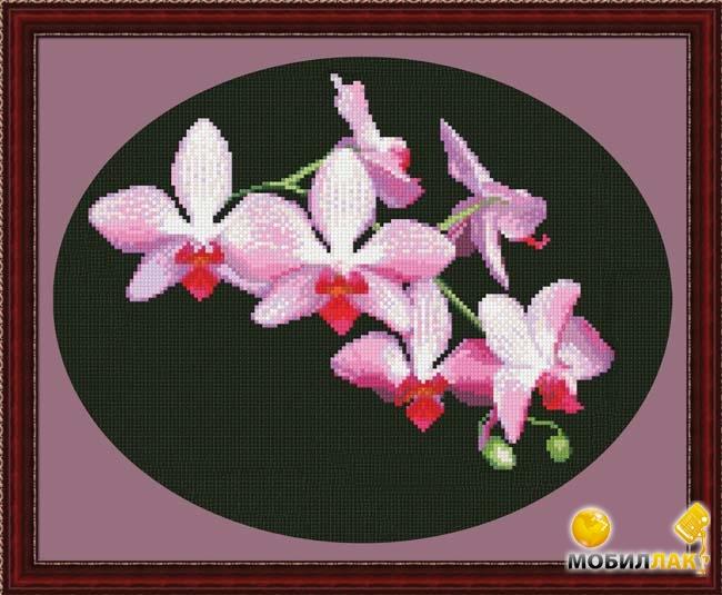 Рисунок для вышивки орхидеи 73