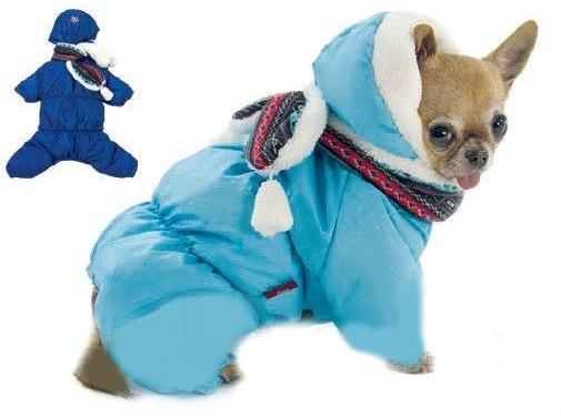 Одежда для собаки в харькове