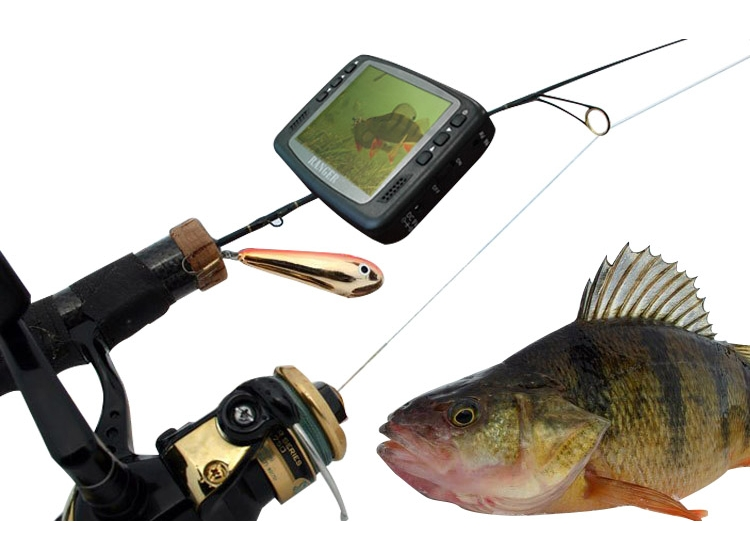 подводная съемки рыбалки цена