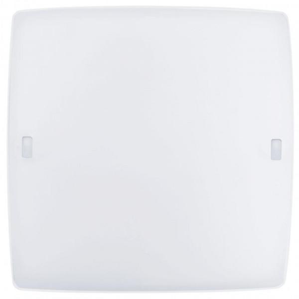 Настенно-потолочный светильник Eglo Borgo 2 Led 91852