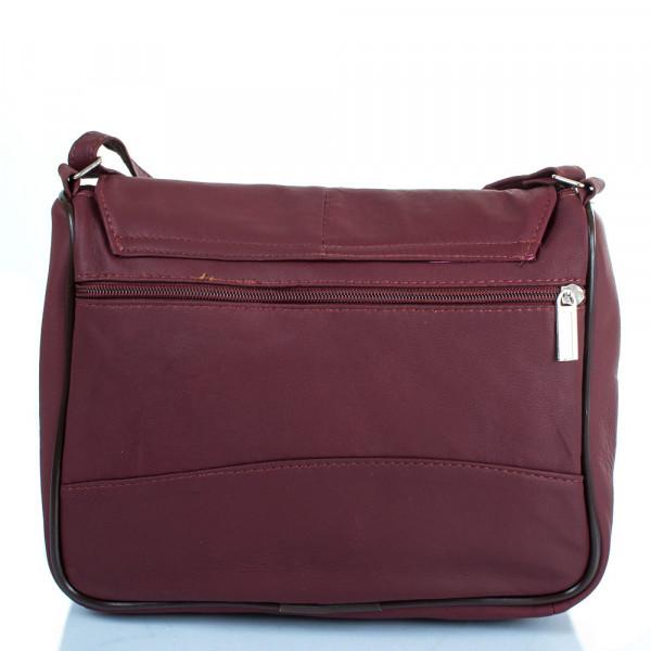 4ceeca0ebda7 Женская кожаная сумка-почтальонка Tunona SK2416-17. Купить Женская ...